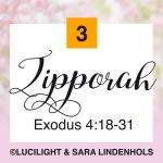 3-zipporah
